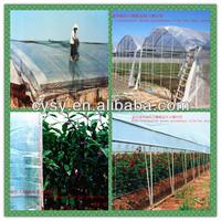 best quality solar plastic greenhouse film,solar hothouse film