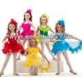 Balletttänzerin kleid, kaufen ballettkleid online, ballett Schönheit