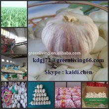 from China Garlic City / 2014 normal white garlic /Aimee