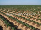 GOOD QUALITY HIGH EFFICIENT DRIP IRRIGATION SYSTEM