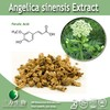 High Quality Angelica Root Oil/Angelica Sinensis Extract/Angelica Extract