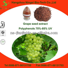 Competitive Price grape seed extract opc 95%