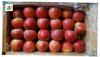 2013 Red qinguan apple(unbagged)