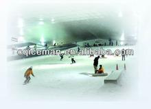 Indoor Ski Rink
