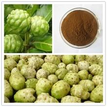 100% Natural Graviola extract/graviola seed/Graviola extract powder for cancer