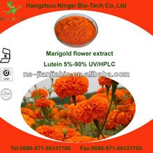 marigold extract lutein 5% 10%~90% powder