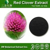 GMP Factory High Quality Isoflavones Red Clover Extract Powder China Supplier