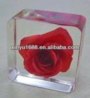 acrylic glass block