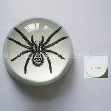 Unique New Design Glass Dome with Base