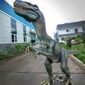 hada de trajes de fiesta para al aire libre del parque de equipos niños dinosaurio