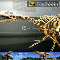 My Dino-Fiberglass dinosaur amusement park replica penny skateboard