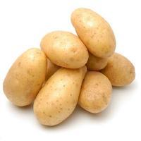 Fresh Potatoes(Holland Variety)