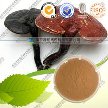 Ganoderma Lucidum Extract,Lucid Ganoderma Extract