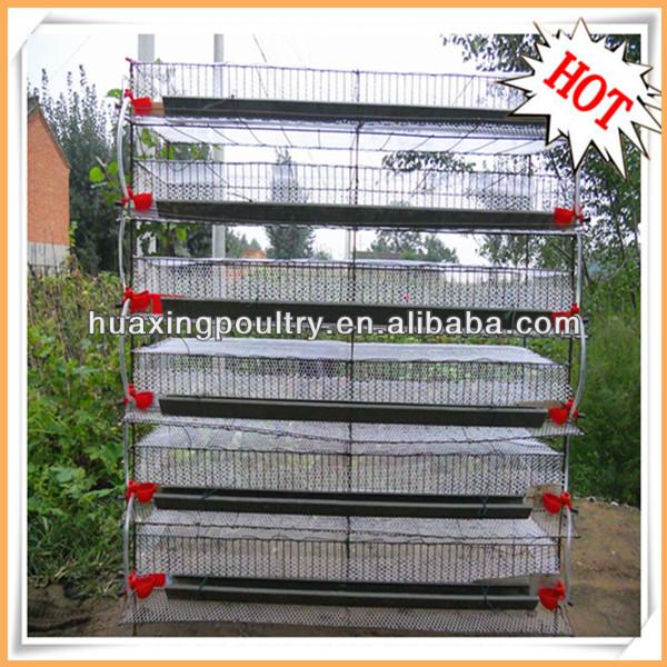 quail farm equipment