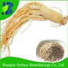 High quality Changbai Mountain Panax Ginseng Seeds For Cultivation