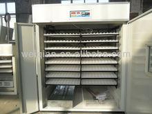 Mejor venta de huevos de codorniz maquinaria agrícola / codorniz agricultura de 7072 huevos de codorniz