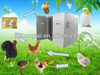 Automatic multi-function 8448 fertilized chicken eggs