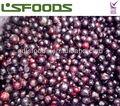 Camote IQF frozen negro grosella fruta entera
