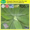100% High quality Agave leaf extract/Agave leaf extract powder/Agave extract powder
