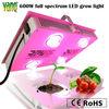 600w led grow light intense multichip LED 380-850nm phosphor full spectrum for big bloom