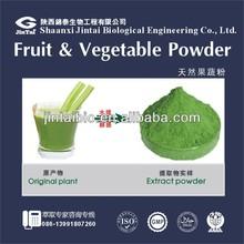 high quality fruit juice powder