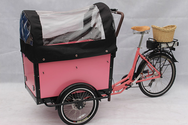 closed cabin cargo tricycle