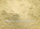 shandong high quality natural garlic extract allicin powder price ISO,HACCP,KOSHER,HALAL,FDA