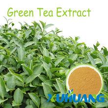 2014 herbal medicine Tea polyphenol , Green Tea Extract
