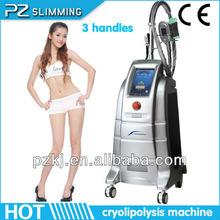 2014 newest fat freezing frozen beuaty equipment