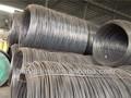 sae1008b laminado en caliente de alambre de acero de la barra