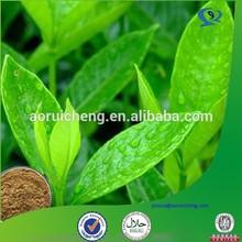 organic green tea, organic green tea extract, pure green tea extract