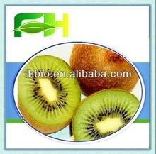 Natural Frozen Kiwi Puree Pulp in bulk