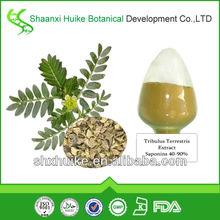 100% Natural Tribulus Terrestris Extract Powder Saponins
