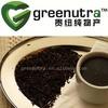 Black Tea Extract Powder