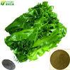 Seaweed Extract Powder with 16-17% K2O fertilizer