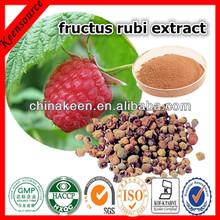 Natural Fructus Rubi Extract 5:1,10:1,20:1/Raspberry ketone/Raspberry P.E.