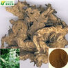 natural black cohosh root extract triterpen saponine