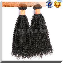 Sensational virgin brazilian curly dream virgin hair