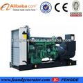 mwm 1000kw generador del motor con el mejor precio de venta caliente