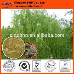 BNP Supply Best Natural White Willow Bark Extract Salicin/white willow bark plant extract powder