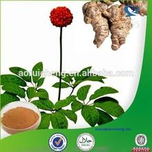 Natural herbal extract radix notoginseng powder