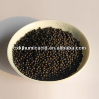 65% Humic Acid Organic Fertilizer