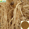 alibaba best sellers 100% soluble in water panax ginseng extract
