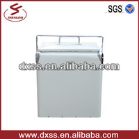 2014 New Thermal Insulated Car Travel Cool Drink Cooler Van with Stainless Tote