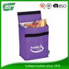 Promotion Summer Polyester Cooler Bag