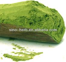 100% natural early Spring japanese organic Matcha green tea powder