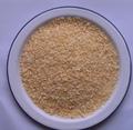 desidratados de alho