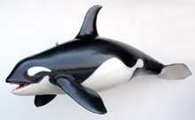 Resin whale