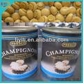 Offre cuire conserve shiitake champignons