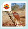 الصمغ العربي الطبيعي( أكاسيا السنغال) e414 من السودان